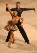 保定拉丁舞蹈培训
