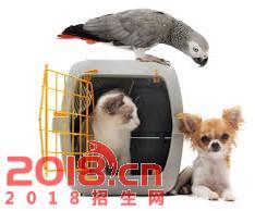 2017调良宠物行为与训练专业培训班